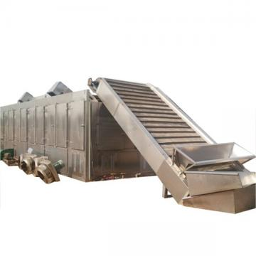 Cabbage/Onion/Carrot Mesh Belt Hot Air Dryer/SUS 304 Box Dryer